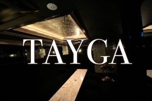 タイガ(TAYGA)